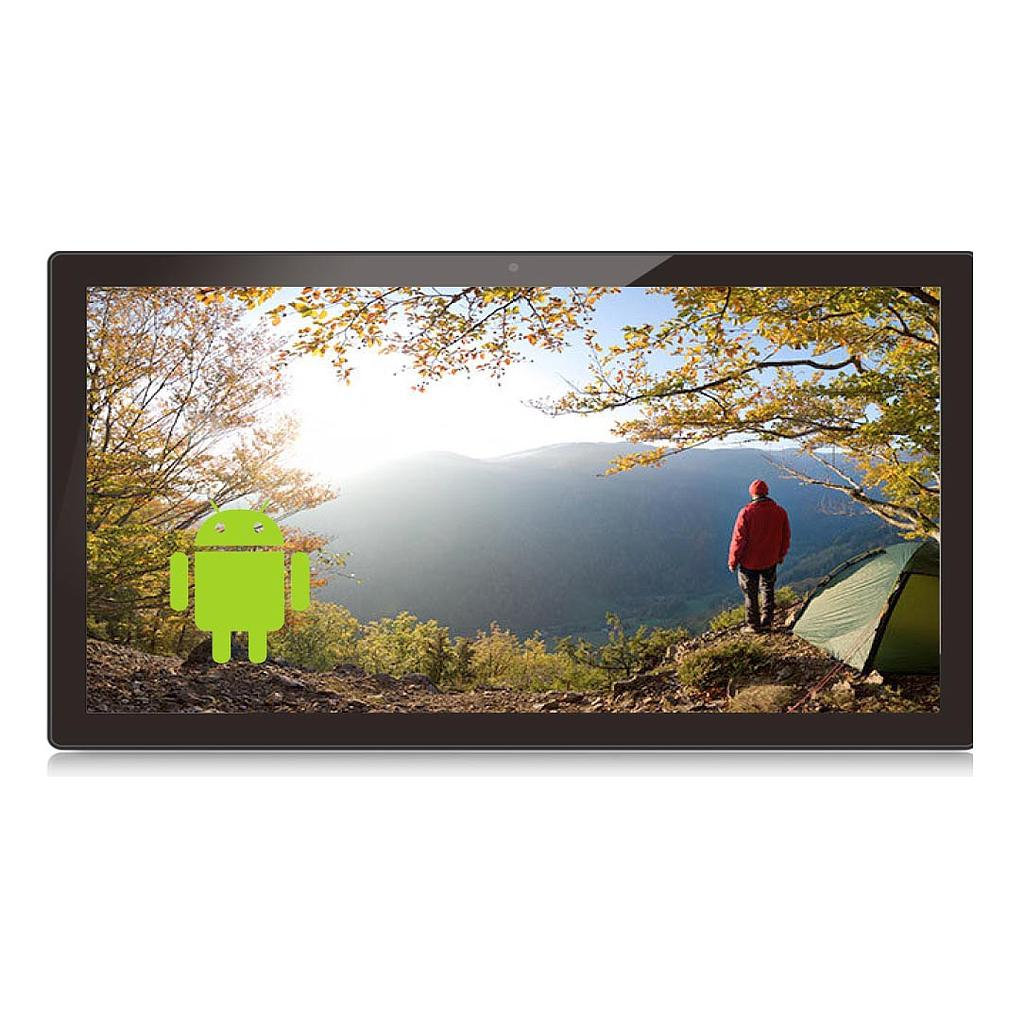 17.3inch Android Display - Non-Touchscreen